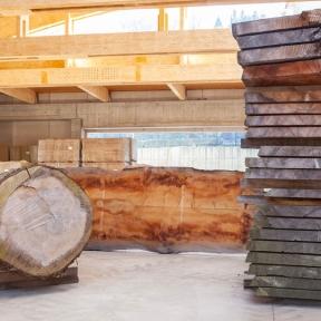 legname-zanella-cedro-del-libano